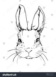 illustration cute bunny rabbit sketch hand stock vector 504438742
