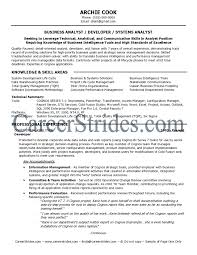 credit analyst resume sample sas data analyst resume resume for your job application business analyst it resume business analyst resume summary