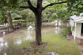 Water Drainage Problems In Backyard Yard Drainage Solutions Digrightin Landscaping