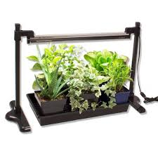 Grow Lights For Plants 10 Easy Pieces Grow Lights For Indoor Plants Gardenista