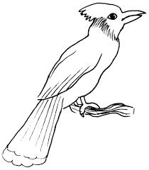 119 dessins de coloriage oiseau à imprimer sur laguerche com page 1