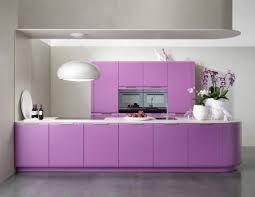 küche lila farbgestaltung der küche bilder und ideen für farbige küchen