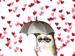 Grumpy Cat Meme Valentines Day - 18 best grumpy cat images on pinterest cat cats and grump cat