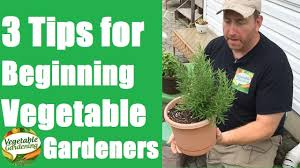 Gardening For Beginners Vegetables by Vegetable Gardening For Beginners 3 Tips For Beginning Vegetable