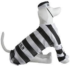 dress up your pet for halloween prisoner dog costume