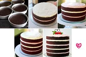 easy to decorate chocolate cake with raspberry marshmallow
