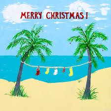 tropical christmas cards tropical christmas photograph by sally weigand