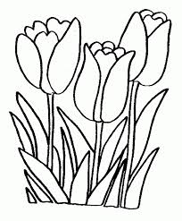 free printable spring flowers coloring pages kids coloring