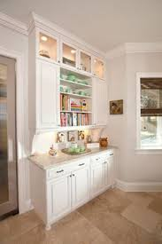 built in cabinet for kitchen fascinating built in cabinets for