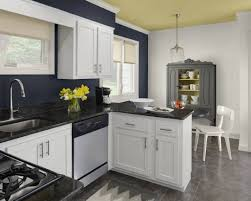 kitchen designs 41 best colors for small kitchens with white