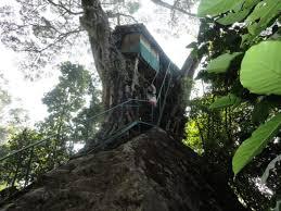 100 cool treehouses treehouses in eureka springs arkansas