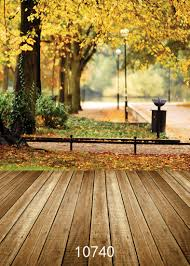 background photography online shop sjoloon autumn photography background fall leaves wood
