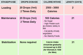 liquid diet drops diet plan 500 calories per day