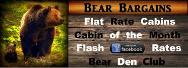 bear tootin cabins rentals in gatlinburg pigeon forge your vacation starts here