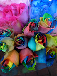 multi colored roses multi colored bridal bouquets the wedding specialiststhe