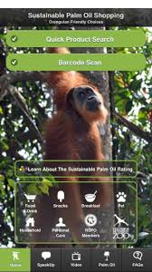lindt halloween candy your halloween candy could be killing orangutans huffpost