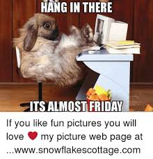 Hang In There Meme - hang in there ts almost friday if you like fun pictures you will