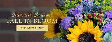 San Diego Flower Delivery San Diego Florist Flower Delivery By Point Loma Village Florist