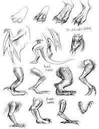 39 draw images draw animals