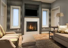 Contemporary Gas Fireplace Insert by Modern Contemporary U0026 Direct Vent Fireplace Gas Inserts Free