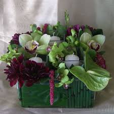 wholesale flowers san diego san diego wholesale flowers supplies square ti leaf
