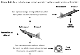 cancers free full text glutathione in cancer cell death