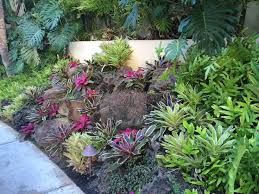 186 best tropical landscaping ideas images on pinterest tropical