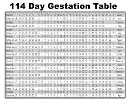complete the table calculator swine pig gestation table
