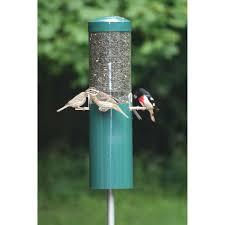 birds choice classic bird feeder with squirrel baffle and pole