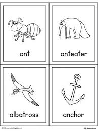 words cards letter a words and pictures printable cards ant anteater