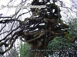 tree by feyphantom on deviantart
