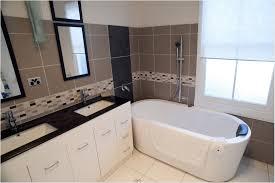 design bathroom ideas inspiring small designs apartment geeks