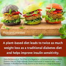 plant based diets best for weight loss and diabetes the