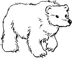 bear coloring pages coloringsuite com