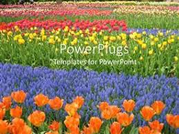 powerpoint template 5 kids playing happily in a garden full of