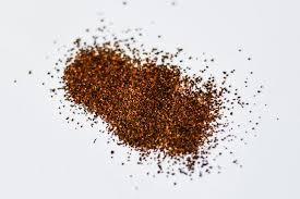 cuisine en g guarana seed powder 10 g novessence