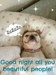 Good Nite Memes - funny good night images 1 good night pinterest night quotes