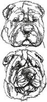 belgian shepherd embroidery design advanced embroidery designs chow chow set animal portraiture