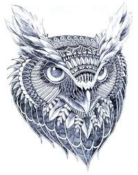236 best coloring pages owls images on coloring