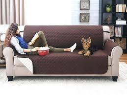 Sleeper Sofa Ratings Fancy Couches Medium Size Of Sleeper Sofa Furniture