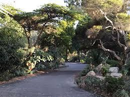 Quail Botanical Gardens Encinitas California Landscape Makeover Workshop Program