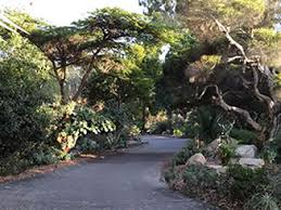Quail Botanical Gardens Free Tuesday Landscape Makeover Workshop Program
