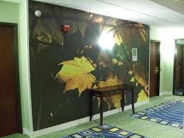 hall painting cool hall painting picture of hotel indigo albany latham latham