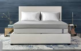 sleep number vs purple which should you choose