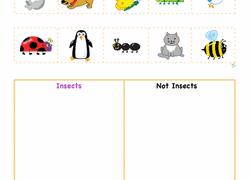 plants animals u0026 the earth worksheets u0026 free printables