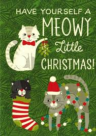 meowy christmas cat boxed christmas cards meowy christmas office