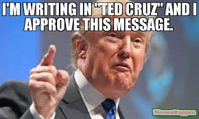 I Approve Meme - i m writing in ted cruz and i approve this message meme
