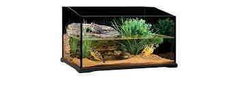 tortoise home decor best turtle tank setup kit