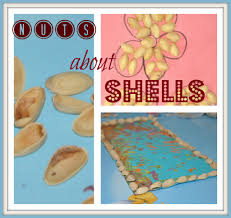 pistachio shells craft kids play box