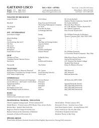 Copy Of A Resume Copy Of Resume Cover Letters Soft Copy Of Resume 4516 Copy Of A
